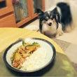 夏野菜カレー。。。