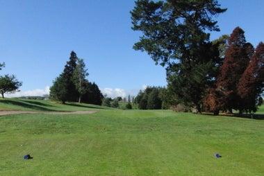 ゴルフ天国ニュージーランド発!「1打でもスコアアップするための上達ヒント集」-ワイカレゴルフ場13番 右からの木