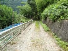 四国中央市釣具屋 ヤマト屋店長ブログ Vol.2