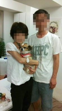 Happy Paws預かり日記-simple_mosaic20130801_163614.jpg
