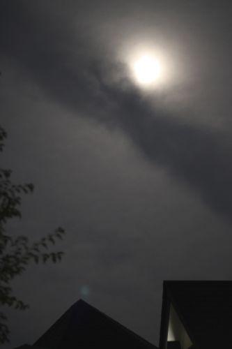 みさきのゑHAPPYになるブログ-伊豆の月