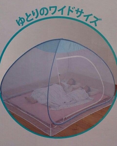 小川キャンパル★ピルツ15 ハーフインナー? | ザ・ちゃんぽん ...