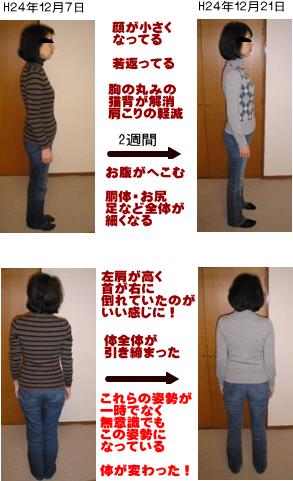 西東京市ひばりヶ丘駅の整体+動き!腰痛・肩こりが再発しない体へ