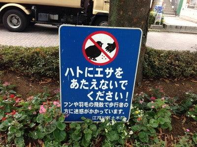 神田ダメリーマンの噂のブログ