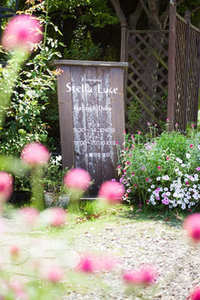 stellaluceのブログ