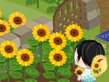 のんびりまったりブログでした-sunflower