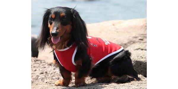 犬服、ダックス服のわんライフのブログ-スマイリータンクロング