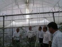 須藤物産トマト屋さんのブログ-須藤物産 植物工場3ha
