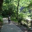 神庭の滝 へ行こう!