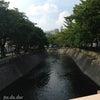 朝ラン♪〜大江川〜の画像