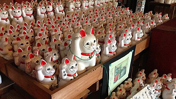 ののちゃんブログ-王子神社の猫神さん