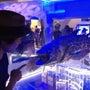 深海のダンゴムシ&美…