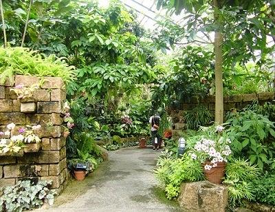 「宇治市植物公園」の検索結果 - Yahoo!検索(画像)