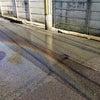 今日から名古屋へGO!の画像