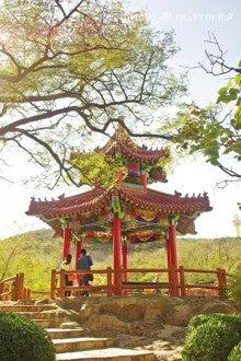 中国大連生活・観光旅行ニュース**-大連 植物園