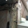 7月の工事状況の画像