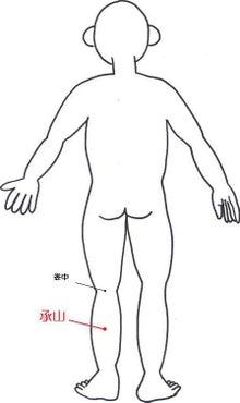 はりとお灸の豐春堂のブログ-承山