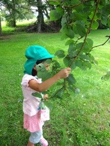 菊水いちい幼稚園のブログ-20130827_02
