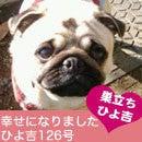ふがれす九州地区ブログ-ひよきち126-1