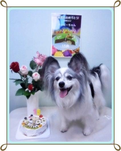 15歳の誕生日