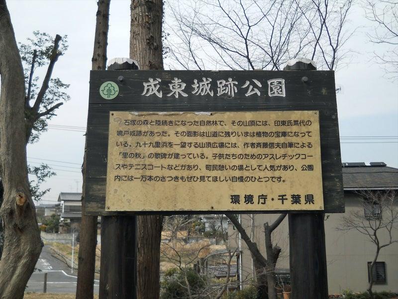 成東城(上総国・千葉県山武市)...