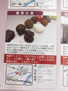 ぶどうEXPO2013