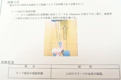 *・☆Piquet☆*゜  ~ハーネスピケ~