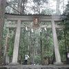 千手観世音菩薩さまの滝★那智大滝♪ 飛瀧神社 和歌山県の画像