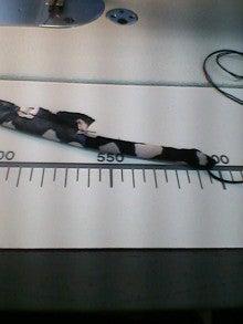 のんたんの裁縫箱-K0070018.JPG