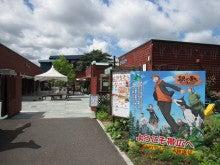 放浪猫 komakichi の ひのころ-hokkaido201308-05