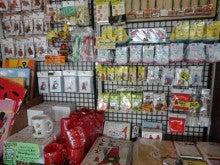 鴨川市商工会女性部のブログ-130910-2