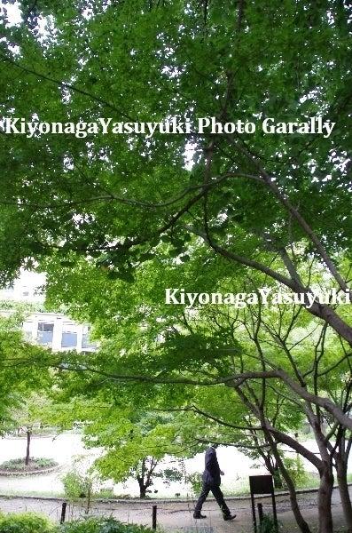 阿蘇写真家 清永保幸 Photo Garally