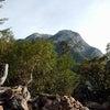 甲斐 駒ヶ岳に登った-2の画像