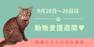 9月20〜26日は動物愛護週間♥動物も大切な家族
