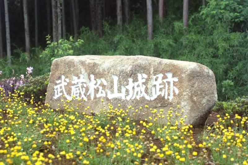 松山城/登城口にある城址碑