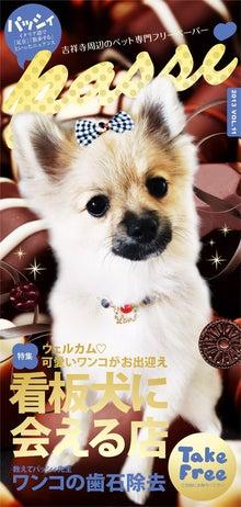 passi2013年秋号vol.11