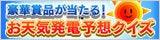 $細野皐月オフィシャルブログ「さつき色」Powered by Ameba