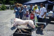 ゆうちんのFX!独立5年で六本木ヒルズトレーダー-豚の丸焼