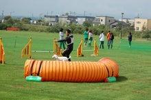 ドッグスポーツ-G12
