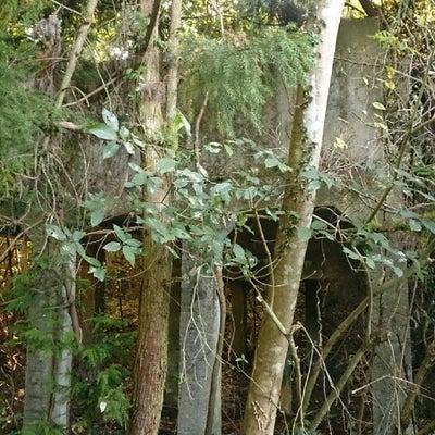 旧於福 鉱山の記事に添付されている画像