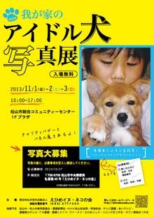 認定NPO法人えひめイヌ・ネコの会ブログ