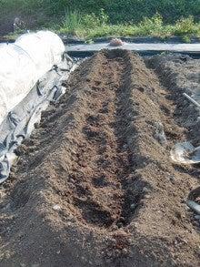 耕作放棄地を剣先スコップで畑に開拓!有機肥料を使い農薬無しで野菜を栽培する週2日の農作業記録 byウッチー-130923キャベツ定植前の元肥投入と畝立て03