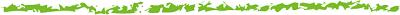 $【三重県伊賀市】 小さな施療院のブログ 【骨盤・頭蓋骨矯正】