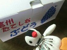 オカメインコのももちゃんと花教室と旅日記-DSC_0654.JPG