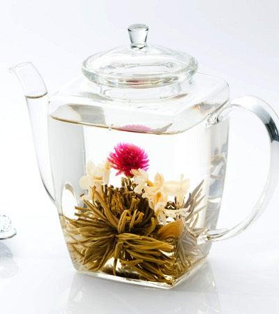 1st Anniversary-工芸茶