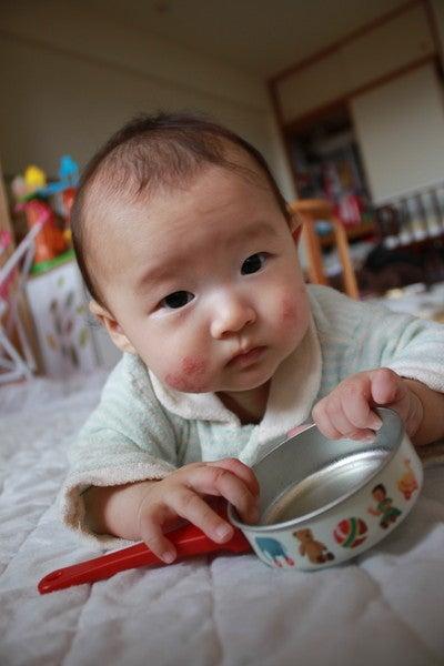 稲城市若葉台の赤ちゃんとお話できるベビーサイン教室*Baby Tree*ベビーツリー