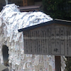 京都にきてます。の画像