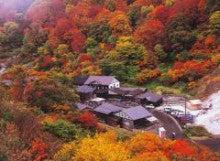 東京医療秘書福祉専門学校のブログ