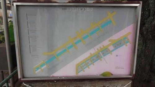 玉川上水旧水路緑道