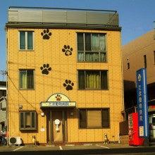 $たま動物病院のブログ